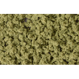 Underbrush Olive Green