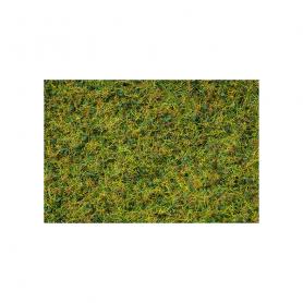 Gräsblandning Hage -Noch 07073