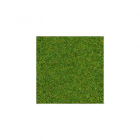 Gräs prydnadsgräs 1,5 mm -Noch 08214