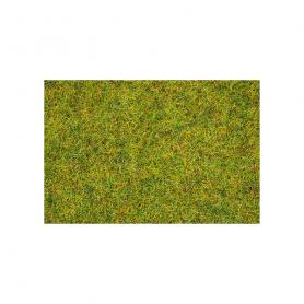 Gräs Sommaräng 2,5 mm 20 g -Noch 08310