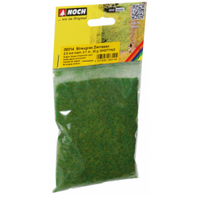 Gräs prydnadsgräs 2,5 mm -Noch 08314