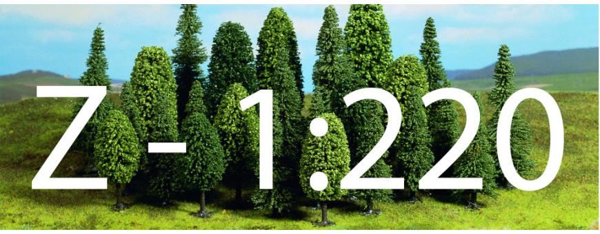 Skala 1:220 - Z